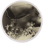 Butterfly Black 06 In Heirloom Finish Round Beach Towel