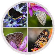 Butterfly Collage  Round Beach Towel