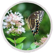 Butterfly Dining  Round Beach Towel