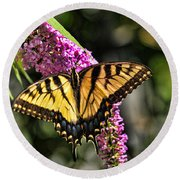Butterfly - Eastern Tiger Swallowtail Round Beach Towel