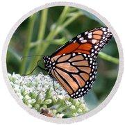 Butterfly Garden - Monarchs 07 Round Beach Towel