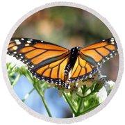 Butterfly Garden - Monarchs 13 Round Beach Towel