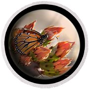 Butterfly In A Globe Round Beach Towel