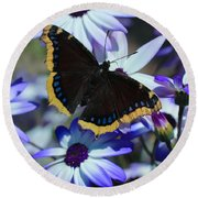 Butterfly In Blue Round Beach Towel