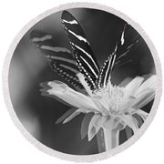 Butterfly In Motion #1952bw Round Beach Towel