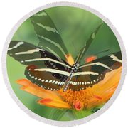 Butterfly In Motion #1967 Round Beach Towel