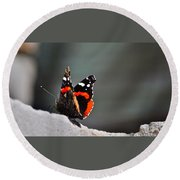 Butterfly Landing Round Beach Towel
