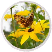 Butterfly On Blackeyed Susan Round Beach Towel