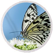 Butterfly On Blue Round Beach Towel