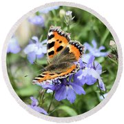 Butterfly On Blue Flower Round Beach Towel