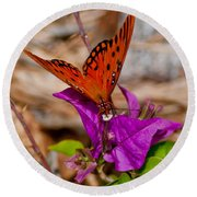 Butterfly On Bouganvilla Round Beach Towel