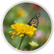 Butterfly On Carnation Round Beach Towel