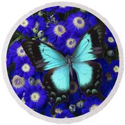 Butterfly On Cineraria Round Beach Towel