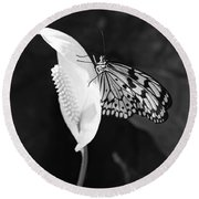 Butterfly On Peace Lilly Round Beach Towel