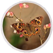 Butterfly On Pink Round Beach Towel