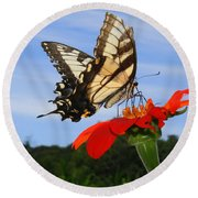 Butterfly On Red Daisy Round Beach Towel