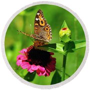Butterfly On Zinnia Flower 2 Round Beach Towel
