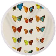 Butterfly Plate Round Beach Towel