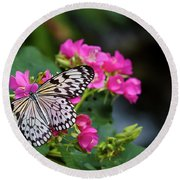 Butterfly Pollinating Flower Round Beach Towel