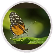 Butterfly Profile Round Beach Towel