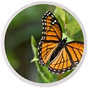Butterfly Scene Round Beach Towel