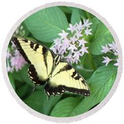 Butterfly - Swallowtail Round Beach Towel