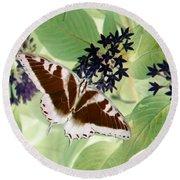 Butterfly - Swallowtail - Photopower 140 Round Beach Towel