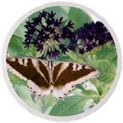 Butterfly - Swallowtail - Photopower 141 Round Beach Towel