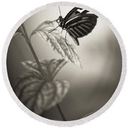 Butterfly Warm Black And White Round Beach Towel