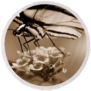 Butterfly Whisper Round Beach Towel