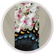 Butterfly Wing And Phlox Round Beach Towel