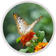 Butterfly Wings Of Sun 2 Round Beach Towel by Thomas Woolworth