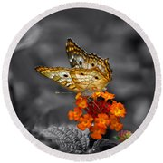 Butterfly Wings Of Sun Light Selective Coloring Black And White Digital Art Round Beach Towel
