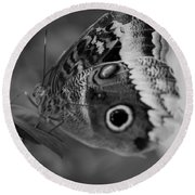 Butterfly5 Round Beach Towel