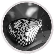 Butterfly7 Round Beach Towel