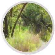 Buttonwood Forest Round Beach Towel by Rudy Umans