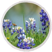 Buzzing The Bluebonnets 01 Round Beach Towel
