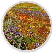 Ca Poppies And Goldfields And Lacy Phacelia And Sage In Antelope Valley Ca Poppy Reserve-california Round Beach Towel