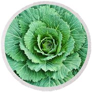Cabbage Leaves Round Beach Towel
