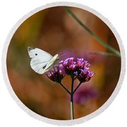Cabbage White Butterfly In Fall Round Beach Towel