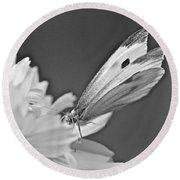 Cabbage White Butterfly On Cosmos - Black And White Round Beach Towel