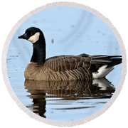 Cackling Goose In Water Round Beach Towel