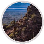 Cacti Covered Rock At Tucson Mountains Round Beach Towel