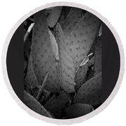 Cactus 5256 Round Beach Towel