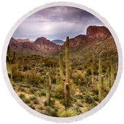 Cactus Canyon  Round Beach Towel
