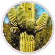 Cactus Face Round Beach Towel