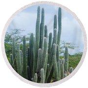 Cactus In Aruba Round Beach Towel