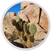 Cactus In Hidden Valley Round Beach Towel