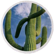 Cactus In The Clouds Round Beach Towel