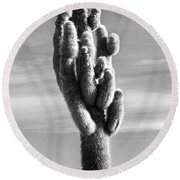 Cactus Island Salt Flats Black And White Round Beach Towel